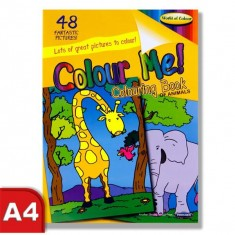 Colouring Book - Perforated 48 pages - Animals