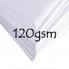 Photo Copy Paper 120gsm ( x 500 )